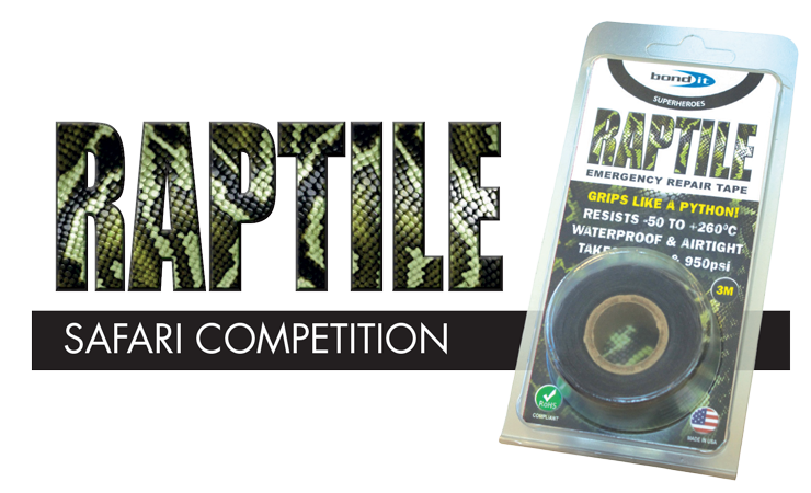 RAPTILE Competition.
